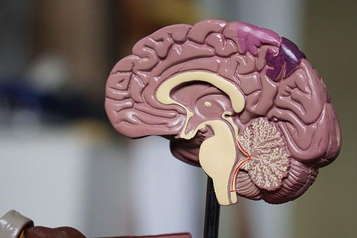 tDCS na Fibromialgia