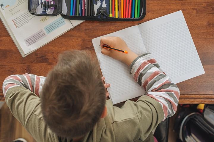 Ensino doméstico para crianças com necessidades especiais